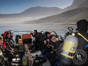 Scuba Diving in Cape Town