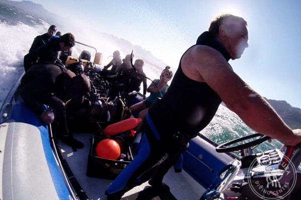 15 Things NOT To Say On A Dive Boat