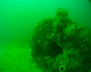 Boiler of Eastern wreck
