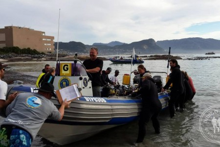 Divers Rate 2014 Cape Town Dive Festival a Huge Success