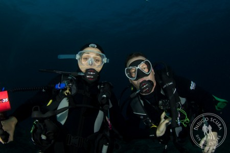 2014 Mozambique Dive Trip – Customer Review