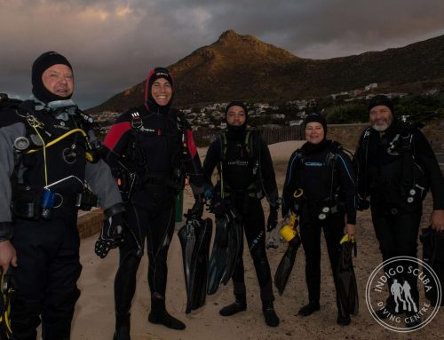 10 Top Reasons Why People Become Scuba Divers!