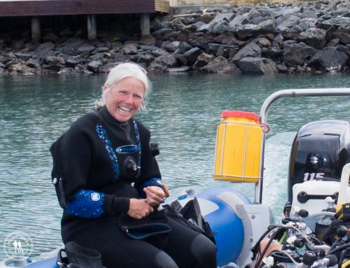 Real Divers:  Georgina Jones – Gordon's Bay Diving