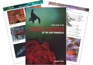 marine_animals_book
