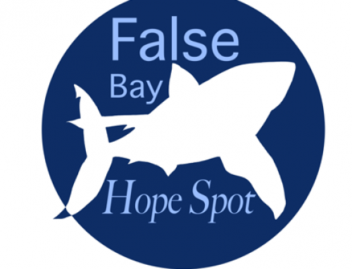 "Presentation on ""The False Bay Hope Spot and You"" By Dr Tony Ribbink: Friday 16 January 2015"