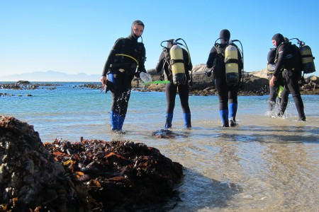 How Long is an Open Water Scuba Diver Course?