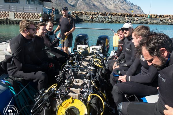 Dive Report:  4 February 2018 – Chalk and Cheese