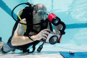 Focus on underwater photography