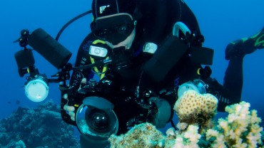 Digital-Underwater-Photography-Courses