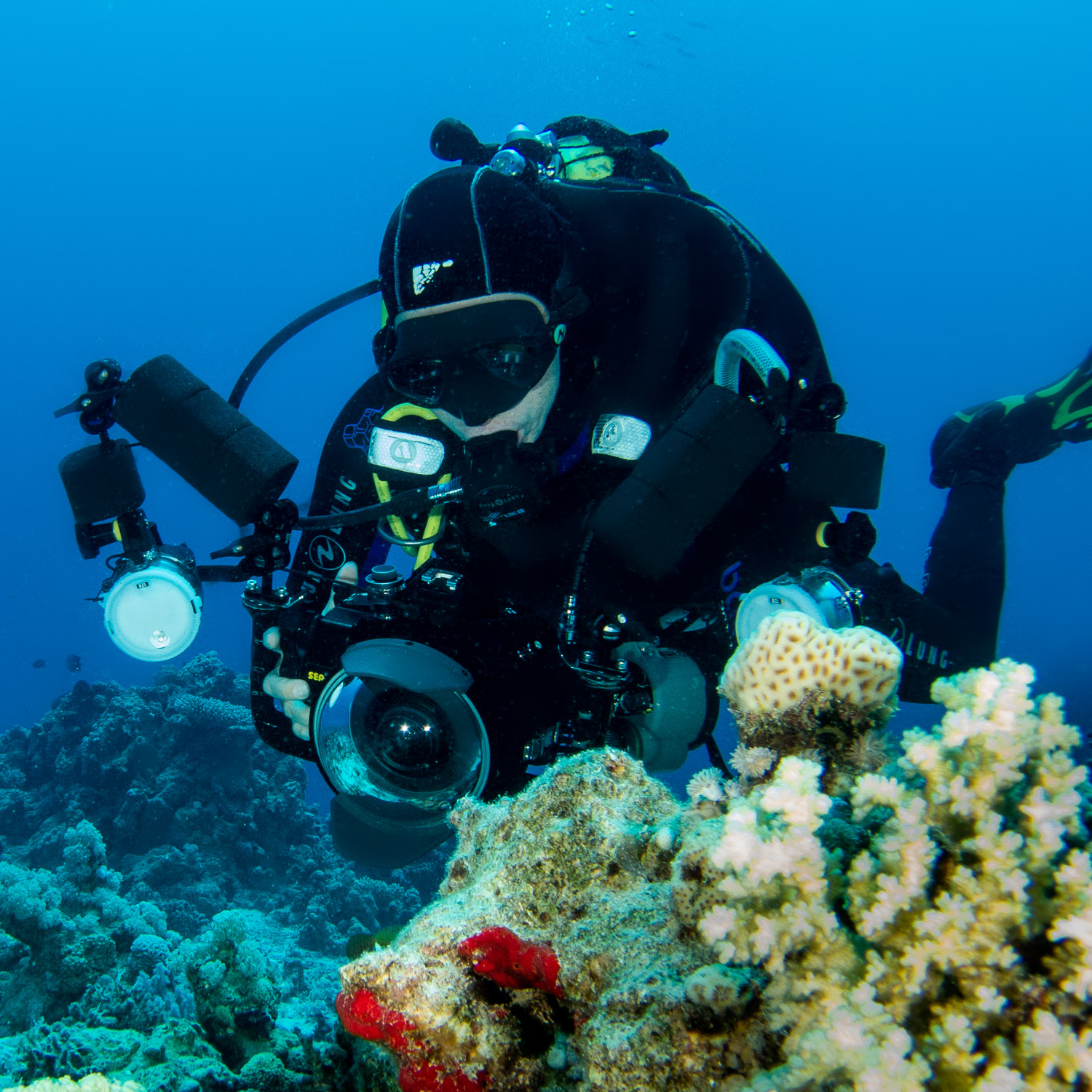 Underwater Photography and Video Course