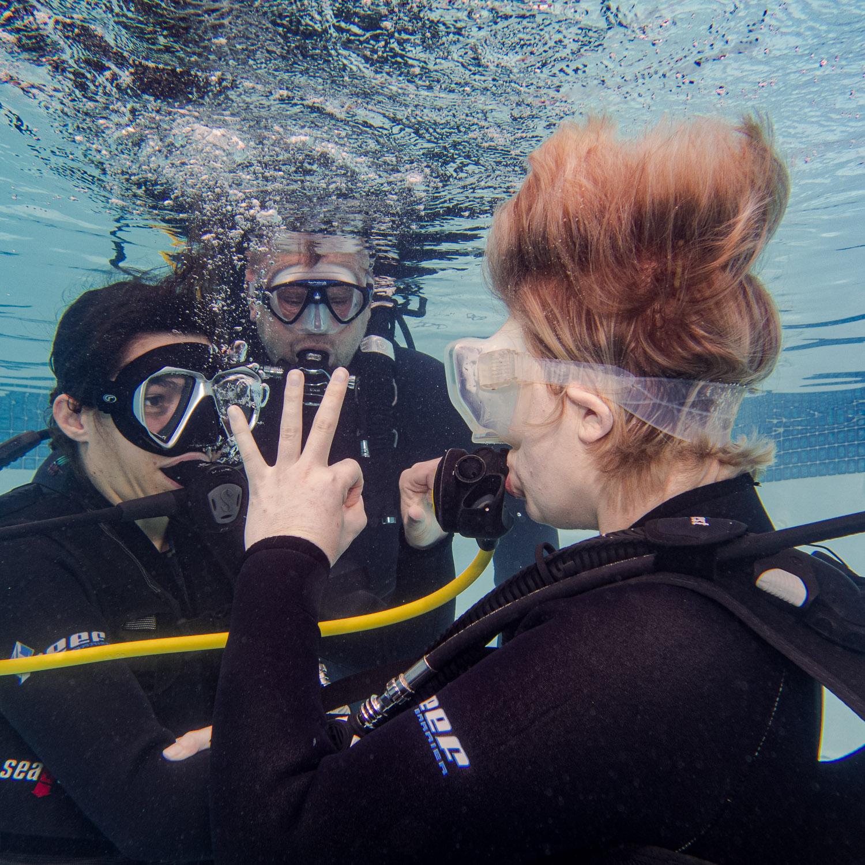 Open Water Scuba Diving Course