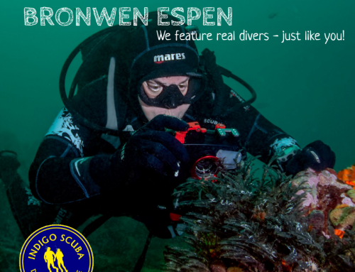 Real Divers: Bronwen Espen