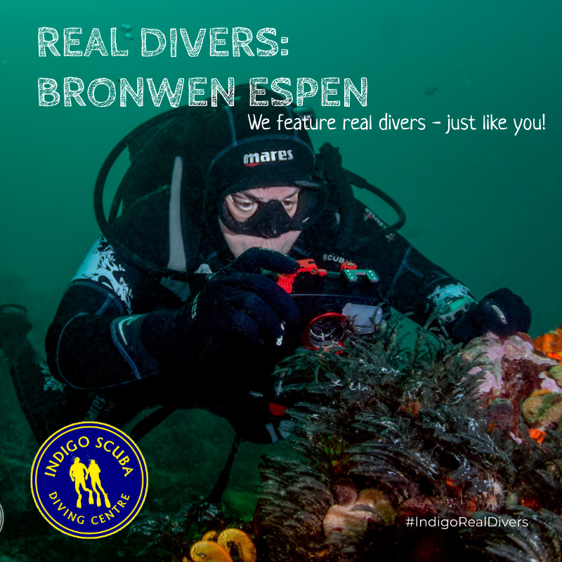 REAL DIVERS: cover image