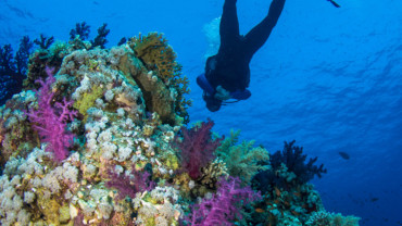 Buoyancy - one of 7 small things that make a big difference in scuba diving